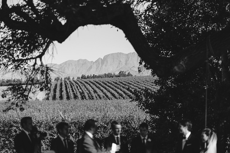 welovepictures_Babylonstoren Wedding_58