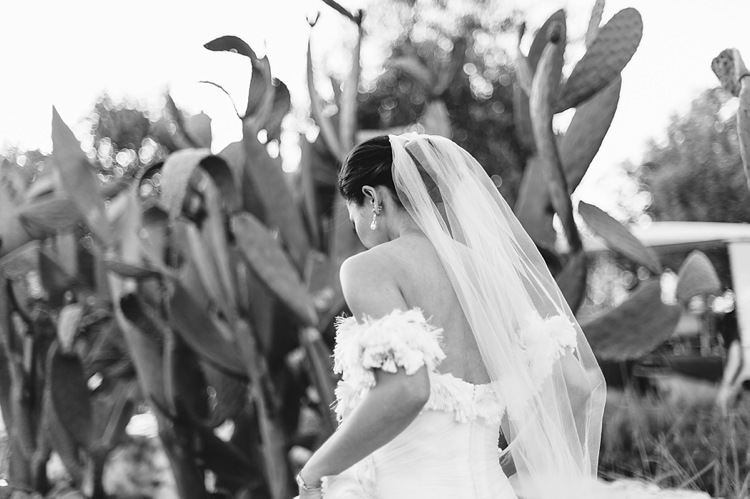 welovepictures_Babylonstoren Wedding_70