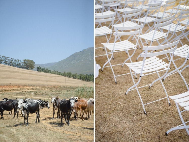Greyton Wedding_The Oaks_welovepictures027