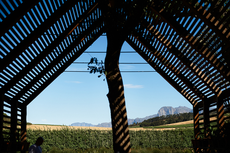 Babylonstoren Wedding_welovepictures_040