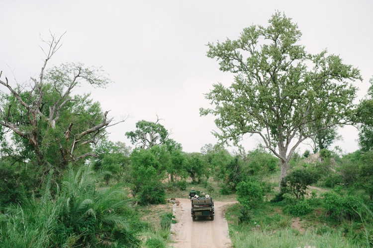 londolozi-wedding_welovepictures_056