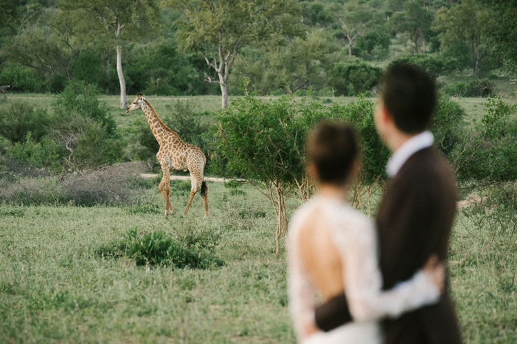 londolozi-wedding_welovepictures_169