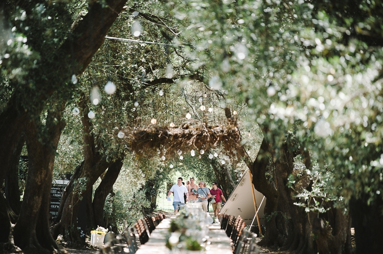 welovepictures_Olive Grove Wedding_002