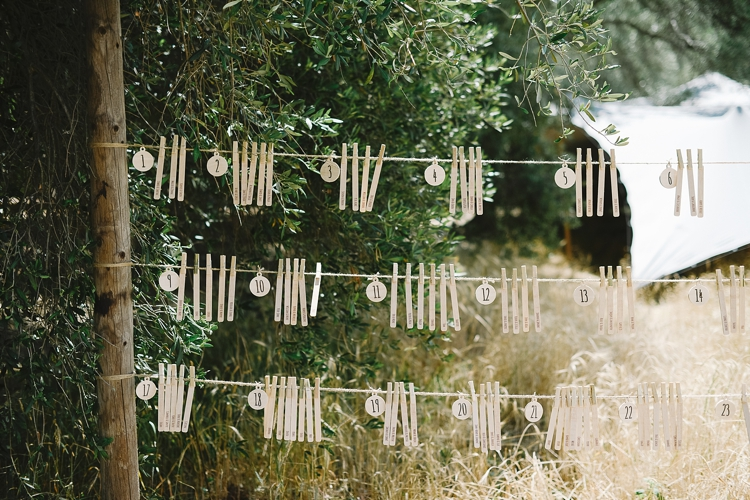 welovepictures_Olive Grove Wedding_004