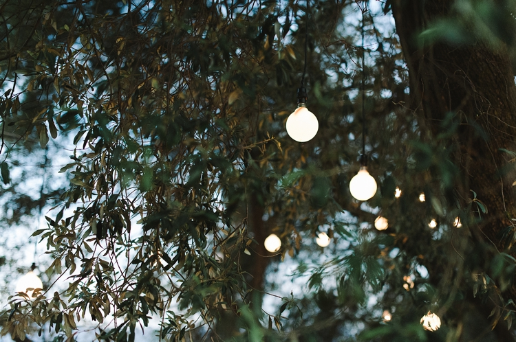 welovepictures_Olive Grove Wedding_087