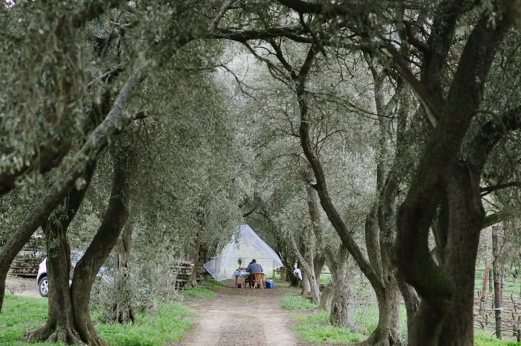 welovepictures_Olive Grove_Engagament03