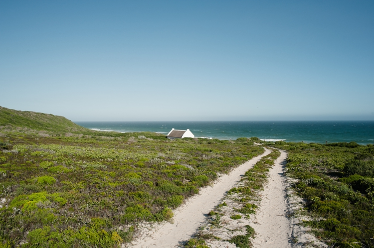 De Hoop Wedding_welovepictures_001