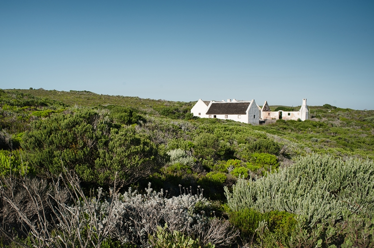 De Hoop Wedding_welovepictures_002