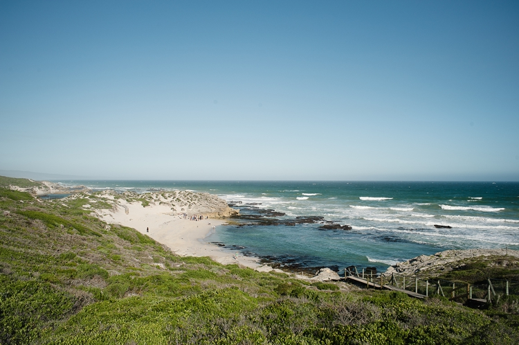 De Hoop Wedding_welovepictures_003